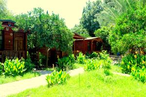 Kadir`s Garden Adrasan
